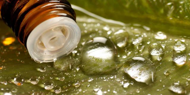 cuidados com a pele, óleo de semente de uva, pele oleosa, todos os tipos de pele, antioxidantes, regeneradores
