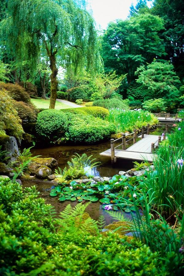 Doug's Photo Blog: Paradise Found