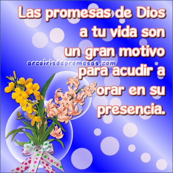 arrebata tus promesas reflexiones cristianas con imágenes