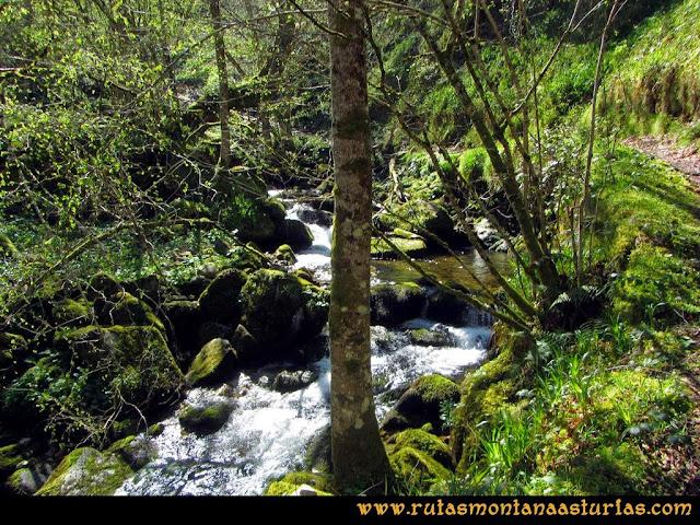 Ruta al Campigüeños y Carasca: Río Orlé y camino a Conforcos