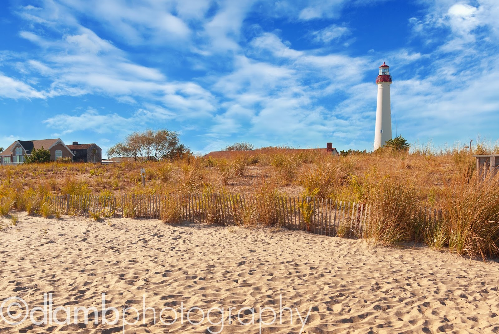 http://david-lamb.artistwebsites.com/featured/cape-may-lighthouse-david-lamb.html