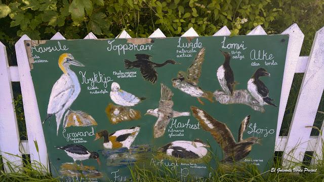 Mural de Aves de la Isla de Runde, Noruega por El Guisante Verde Project