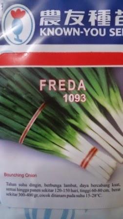 Benih,bawang daun,Freda,Wotel, tahan virus,kuning, keriting, unggul, dataran rendah, tinggi, petani