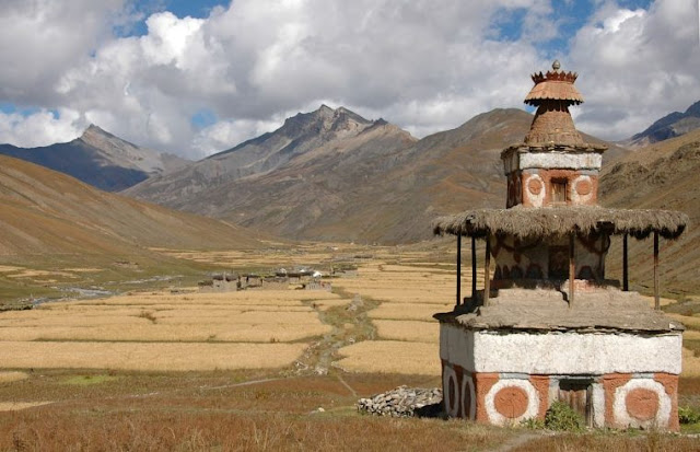 Ancient barley took high road to China, changed to summer crop in Tibet