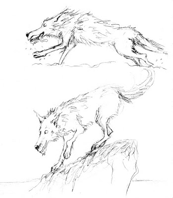 croquis illustration loup wolf heureux pêche court running fishing
