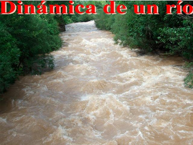 La dinámica de un río