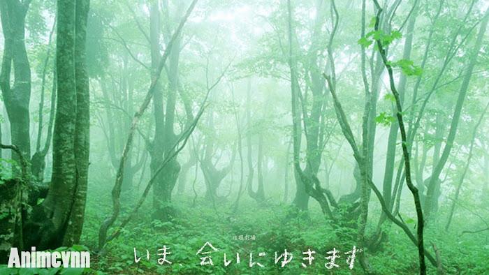 Ảnh trong phim Ima Ai ni Yukimasu -Về Lại Bên Anh 2