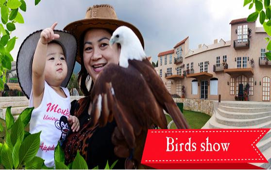 Bird Show Eco Green Park