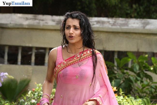 Trisha Krishnan sizzling Photos in Wet Pink Saree will definitely make you feel Cold