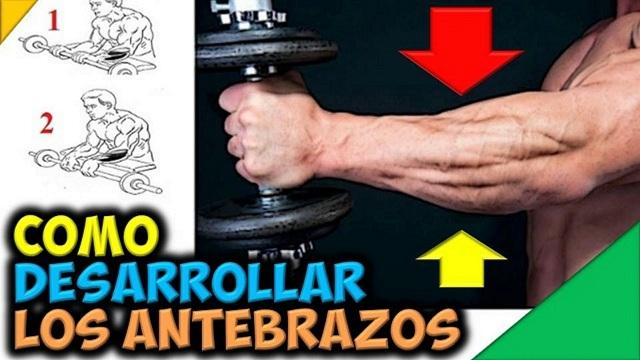 Como Desarrollar Los Antebrazos: Para Ganar Masa Muscular en los Brazos