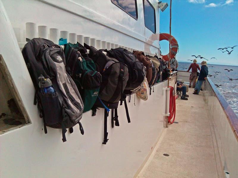 San Diego pelagic trip