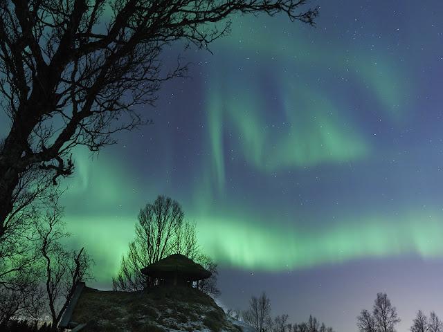 Aurora Boreanl en Tromso, norte de Noruega por Monica Poza