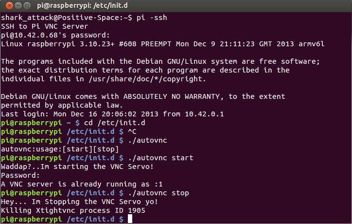 How to write VNC server (Raspberry Pi) startup and VNC client script