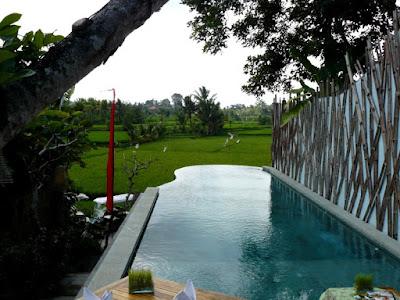 ubud padi villas piscina