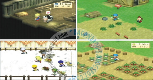 game Game Harvest Moon Boy and Girl CSO ISO
