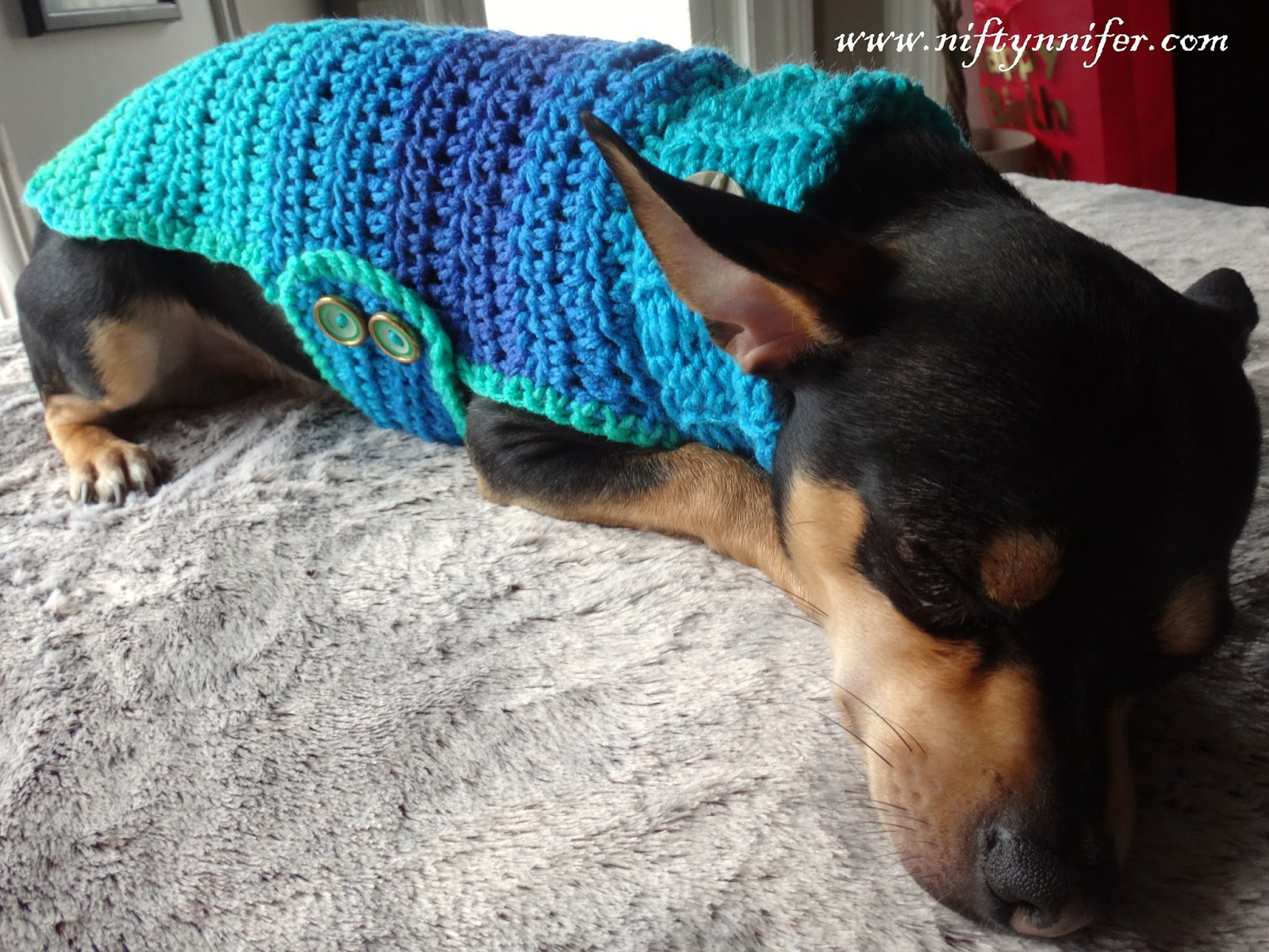 Niftynnifers Crochet Crafts Free Crochet Pattern Chihuahua Sweater