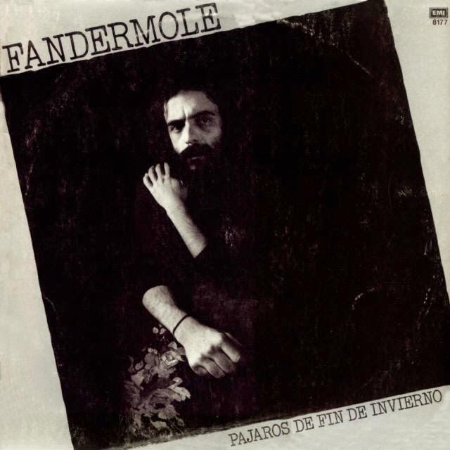 fandermole-pajaros-invierno-frontal