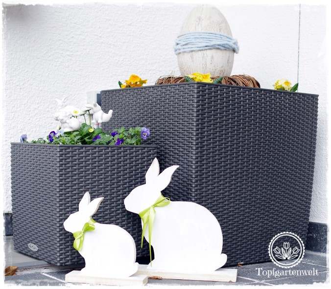 Osterdeko Garten natürliche moderne osterdeko für den garten hasen eier bellis hornveilchen und moos