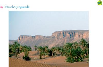 http://www.primerodecarlos.com/SEGUNDO_PRIMARIA/marzo/Unidad1_3/actividades/actividades_una_una/cono/paisaje_desertico.swf