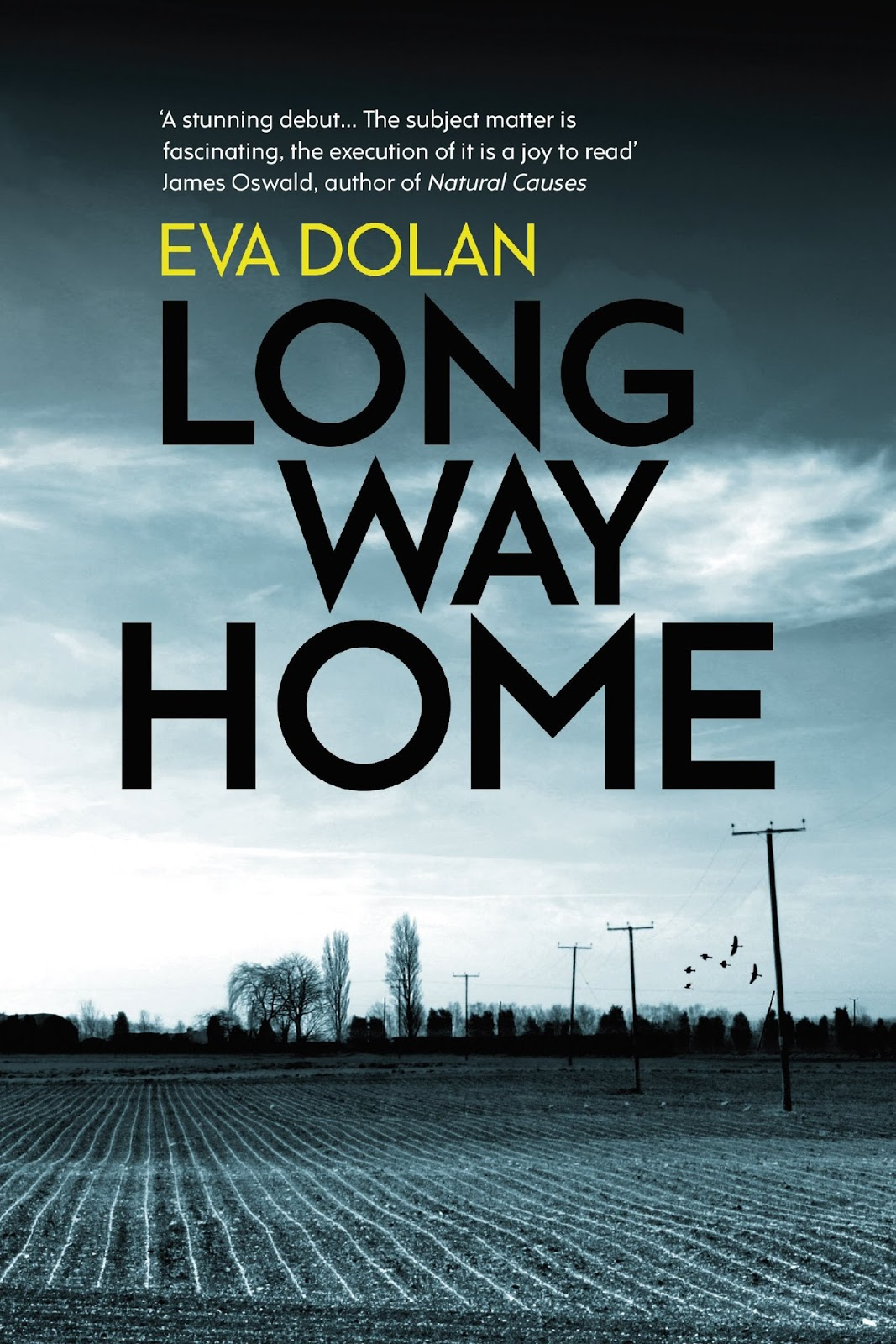 Long Way Home by Eva Dolan