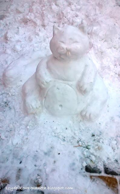 kotek ze śniegu