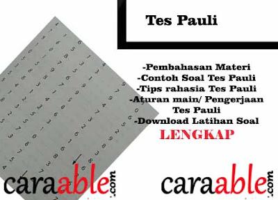 Membongkar Rahasia Trik Lulus Tes Pauli dengan mendetail ditambah contoh soal dan pembahasan. dan download contoh soal tes pauli gratis