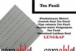 Tes Pauli : Membongkar Rahasia Trik Lulus Tes Pauli + Contoh Tes Pauli dengan Pembahasan Lengkap