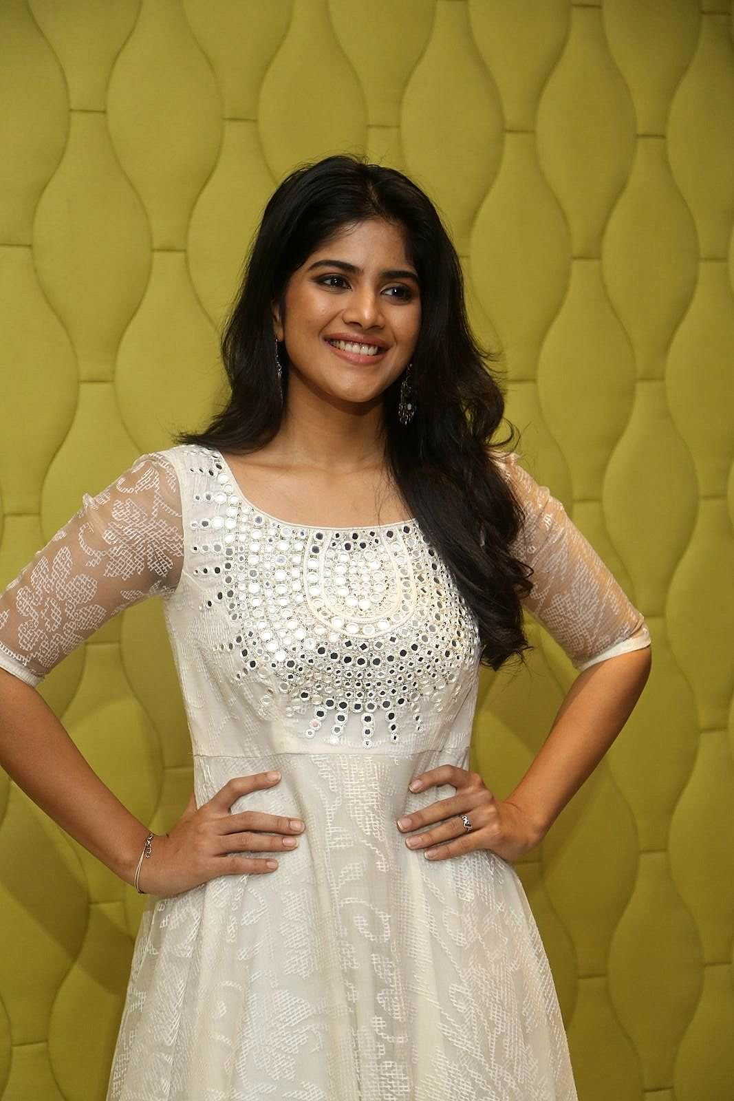 Chal Mohan Ranga Movie Success Meet Photos