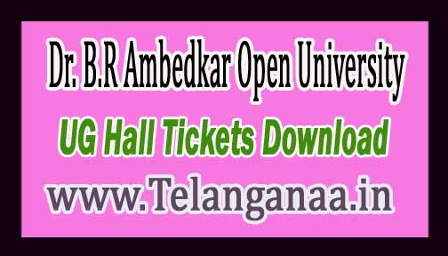 Dr. B.R Ambedkar Open University BRAOU UG Spell-2 Hall Tickets 2016 Download