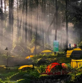 CAMPING GROUND DI PUNCAK