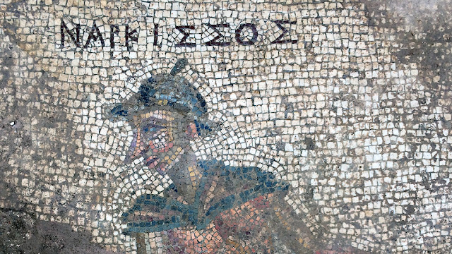 Roman-era mosaic unearthed in ancient city of Antiochia ad Cragum on southern coast of Turkey