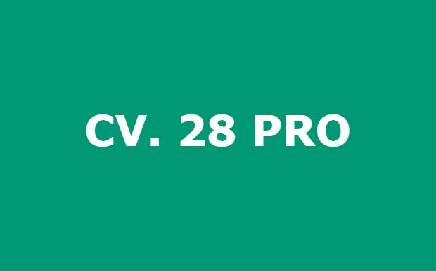 Lowongan Kerja Makassar Karyawan CV 28 Pro Tamalanrea