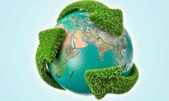 Óptimo plan para reciclar en casa