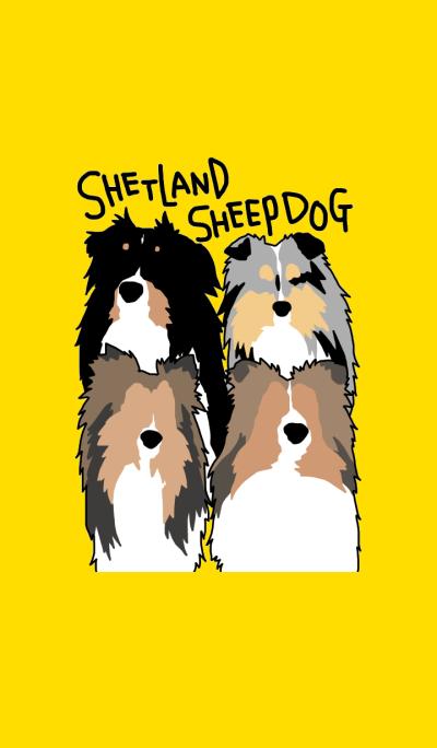 Shetlandsheepdog Theme