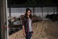 Actress Trisha Latest Pos from Garjanai Telugu Movie  0005.jpg