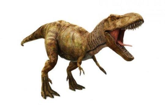 Λανθασμένες οι αναπαραστάσεις σαρκοβόρων δεινοσαύρων