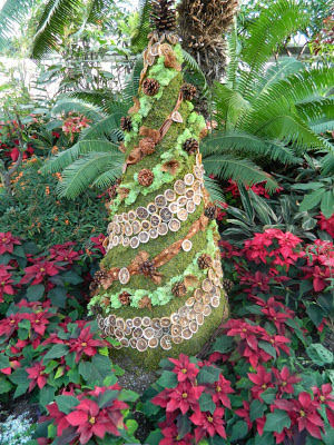 Christmas tree at allan gardens christmas flower show 2012 by garden muses: a toronto gardening blog