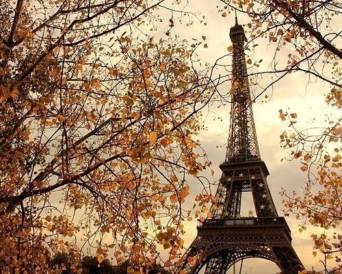 Tempos de Tudo: Papel de parede da Torre Eiffel