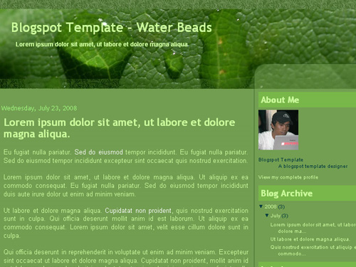 New Blogger Template: Water Beads