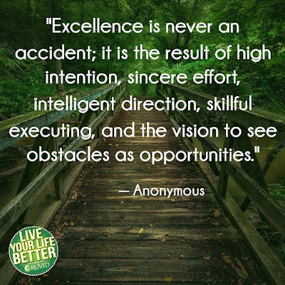 A Life of Excellence Quotes
