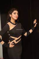 Pranitha Subhash in a skin tight backless brown gown at 64th Jio Filmfare Awards South ~  Exclusive 144.JPG