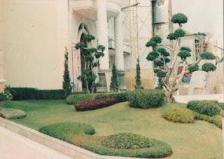Galeri Taman - Tukang Taman Surabaya 08