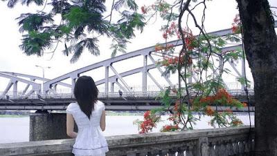 Phượng cũ bên sông