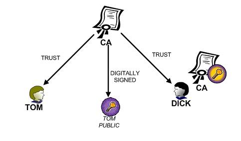 DANE - Téchne Digitus InfoSec