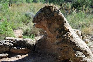 erosion rocosa en el suelo con forma de dragón