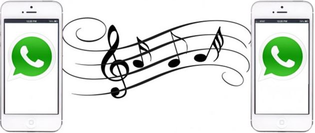 Cara membuat status wa dengan lagu