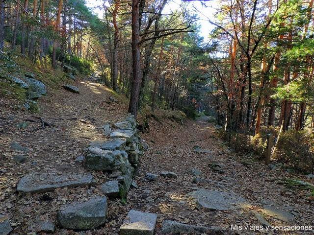cruce, caminos, senda ecológica de Canencia