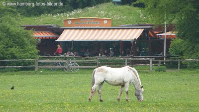 Restaurant im Niendorfer Gehege