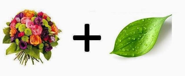 Fragancias, familia olfativa floral - verde
