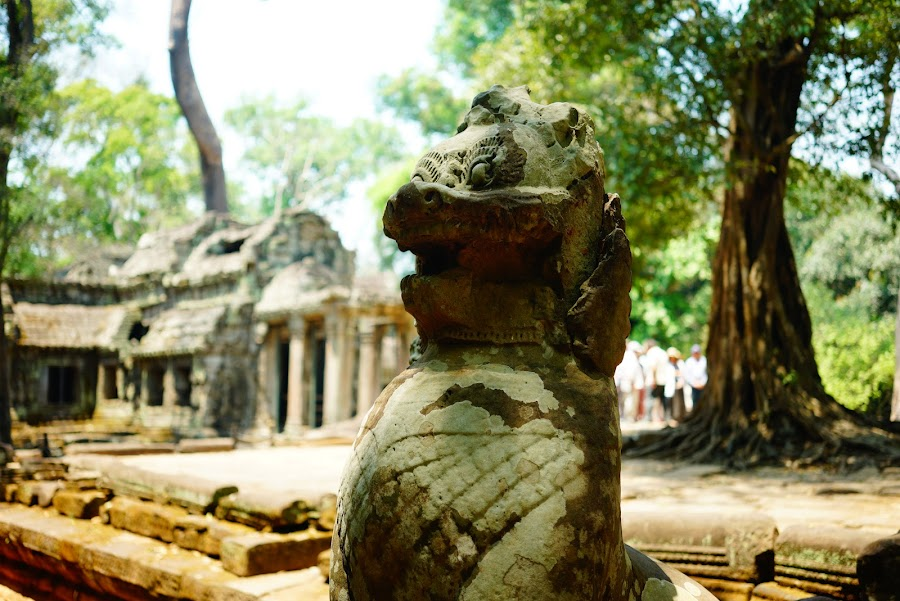 Ta Phrom temple, ancient Angkor